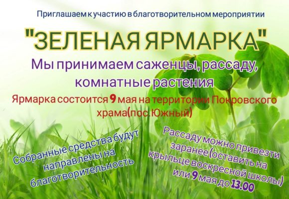 """Благотворительное мероприятие """"Зеленая ярмарка"""""""